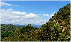 A Little Before Autumn (Chris C. Crowley- Always behind but trying to catc) Tags: alittlebeforeautumn northcarolina mountains scenic scenicoverlook landscape nature outdoors bluesky clouds mountainview headinghomefrombristol evacuatingfromhurricaneirma 9132017