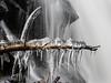 Ice time (Fjällkantsbon) Tags: doroteakommun evamårtensson högland kroksjöbäcken lappland oktober sverige vatten vattenfall västerbottenslän is ice istappar icetime iceage istid icicles waterfall