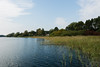 Lakeshore Müritz National Park (Journeyman of Words) Tags: 2017mecklenburgvorpommern autumn deutschland mecklenburgvorpommern müritz plants sky water mecklenburgwestpomerania germany seenplatte waren müritznationalpark lake shore