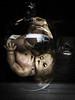 Trapped in the Upside-Down (Katrina Wright) Tags: iphone6 newyork usa img07703 doll scary halloween jar glassdark piercings baby upsidedown strangerthings creepy disturbing belljar