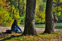 Girl in Autumn (smuta2006) Tags: girl woman young jeans denim sitting mobile cellular phone river riverfront creek backwater dnieper dnipro riverbank bank beach sand ground water nature beauty tree stump stub trunk stem bole rind bark leaves red yellow fallen green greenery foliage grove copse woods verdure undergrowth brushwood thicket plant grass weed duckweed bush shrub twig branch fall autumn vivid gleam sheen glow luster brilliance shadow reflection waterscape landscape scenery kyiv kiev ukraine europe affinityphoto hdr nikon d5100