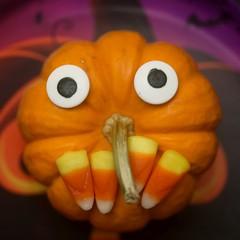 Meet Lil Punkin!! (-SOLO--) Tags: macromondays halloween pumpkin
