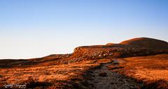 Col de la Croix Saint-Robert, Massif du Sancy, Auvergne, France (LightWolf63) Tags: aube montagne chemin auvergne france