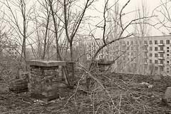 _MG_8304 (daniel.p.dezso) Tags: kiskunlacháza kiskunlacházi elhagyatott orosz szoviet laktanya abandoned russian soviet barrack urbex ruin rooftop reclaim military base militarybase