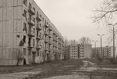 _MG_8404 (daniel.p.dezso) Tags: kiskunlacháza kiskunlacházi elhagyatott orosz szoviet laktanya abandoned russian soviet barrack urbex ruin shell explositions