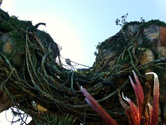Pandora: The World of Avatar (John.Johnson.15) Tags: pandora world avatar avatarland disneys animal kingdom orlando florida fl vacation new nature gren blue orange sunlight rock floating mountains banshee night lights navii navi movie film waterfalls glow cave flowers plants