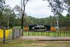 Site of the Gympie Muster (Allan Bowen) Tags: stateforest amamoor amamoorcreek queensland australia au