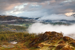 Holme fell tarn ... (Mike Ridley.) Tags: lakedistrict trees mountains fog mist cloudscape nature sonya7r2 leefilters nisilandscapepolariser mikeridley dawn cumbria