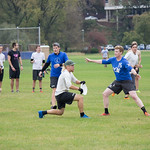 "<b>Alumni Ultimate Frisbee</b><br/> Homecoming 2017 Men's Ultimate Frisbee Alumni game. Photo by Rachel Miller '18<a href=""//farm5.static.flickr.com/4459/23889538938_5ebaa577bb_o.jpg"" title=""High res"">∝</a>"