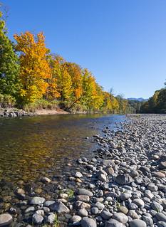 Autumn along the Snoqualmie River