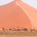 Dunes in Sossusvlei, Namibia
