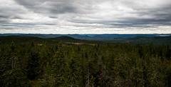 Granberget 1 (Vildmarcus) Tags: värmland sweden sverige skog woods landscape scenery nikon d610 vildmarcus marcus ilberg torsby sysslebäck urskog gammelskog