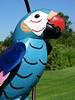 Tin Parrott (e r j k . a m e r j k a) Tags: pennsylvania butler portersville roadside figure parrot whimsy pa488 us19 i79pa erjk