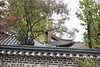 Roof of Yun Bo-seon's house / 윤보선 고택 (Patrick Vierthaler) Tags: 윤보선 고택 seoul bukchon hanok village korean houses walk 서울 북촌 한옥 마을 안국 ソウル 北村 韓屋 伝統 家