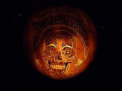 P1280930 (amiterangi1) Tags: jackolanterns halloween governorsisland newyorkharbor pumpkins