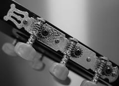 Macro Monday Musical instrument (ryorii) Tags: 1000v40f chitarra biancoenero bw blackandwhite guitar musicalinstruments mm macro monday macromonday members choice musical instruments