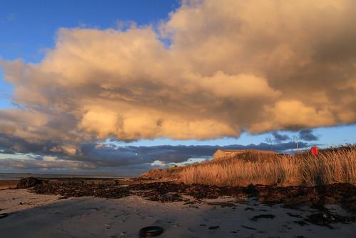 Stroma View
