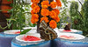 Lunch time (Irina.yaNeya) Tags: dubai uae emirates park garden butterfly nature flowers dubái eau parque jardín mariposa naturaleza flores الامارات دبي حديقة منتزه طبيعة زهور فراشة дубаи оаэ эмираты парк сад бабочки природа цветы