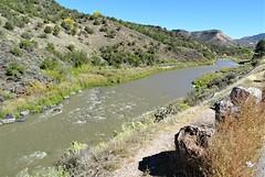 100317-25, The Rio Grande River In New Mexico (skw9413) Tags: newmexico riogranderiver scenery landscape