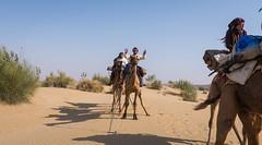Rajasthan - Jaisalmer - Desert Safari with Camels-13