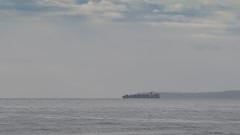 20171017_8983_7D2-200 Aglaia departs (johnstewartnz) Tags: canon canonapsc apsc eos 7d2 7dmarkii 7d canon7dmarkii canoneos7dmkii newbrighton newbrightonbeach 70200mm 70200 70200f28 ship containership aglaia 100canon unlimitedphotos yabbadabbadoo yabbadabadoo