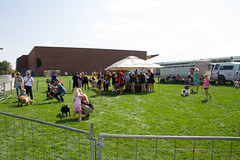 2017 New Student Move In Day-20.jpg (Gustavus Adolphus College) Tags: football gamegame homecoming game pc kylee brimsek petting zoo 20170923 animals outdoor outside students homecomingfootballgame pckyleebrimsek pettingzoo