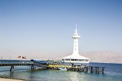 Acuario de Eilat. La gente queda dentro de una pecera en la que es observada por distintas especies marinas que viven en libertad. (Cindy en Israel) Tags: acuario eilat israel arquitectura mar marina puente cielo montañas marrojo paisaje azul turismo travel