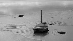 Boat in mud with oar marks ($teveH) Tags: