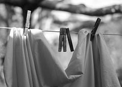 clothesline (TPStearns) Tags: monochrome leica m8 cv75mm25
