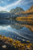 Autumn Morning at Silver Lake (alicecahill) Tags: sierranevada autumn october california leaves ©alicecahill silverlake easternsierra reflection michaelfryeworkshop monocounty morning lake fall usa mountain droh dailyrayofhope
