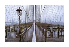 Just Us (Nico Geerlings) Tags: ngimages nicogeerlings nicogeerlingsphotography nyc ny usa brooklynbridge solitary solitude rain raining rainy bridge brooklyn dumbo eastriver manhattan newyorkcity