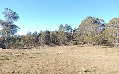 221 Greenlands Road, Nimmitabel NSW