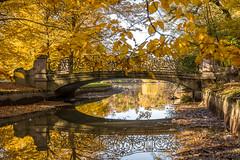 Autumn glow (hjuengst) Tags: autumn fall fallcolors herbst herbstfarben october munich münchen bavaria bayern autumnleaves fallfoliage bridge romantic canal