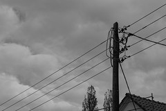 20171008-DSC01494 (Fabian Tomczyk) Tags: blackandwhite pole wires lines power electricity gray sky wood woodenpole edited lightroom sony sonyalpha6000 alpha6000 alphacollective alphaddicted minolta rokkor manualfocus