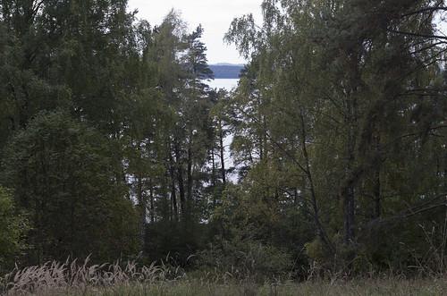 Skats no Ezerlūku pilskalna uz Zebrus ezeru, 01.10.2017.