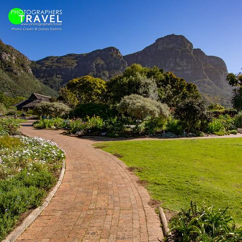 Kirstenbosch Botanical Garden - Cape Town 2013