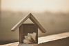 HOME (Ayeshadows) Tags: hut wooden home is where the heart mythreekids makinghomeforkids blessed happiness