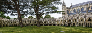 ... Salisbury Chathedral, cloister ...