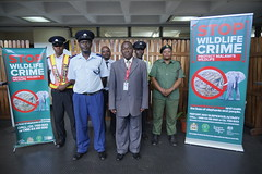 "Stop Wildlife Crime • <a style=""font-size:0.8em;"" href=""http://www.flickr.com/photos/152934089@N02/37565573736/"" target=""_blank"">View on Flickr</a>"