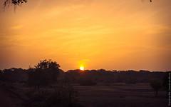 25.06-Yala-National-Park-Sri-Lanka-canon-1500px-004