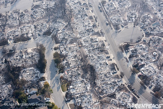 Wildfires Santa Rosa Devastation