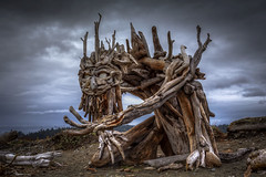McGnarly (Paul Rioux) Tags: beach waterfront driftwood art mcgnarly monster creature scary prioux clouds weather storm gloomy esquimaltlagoon
