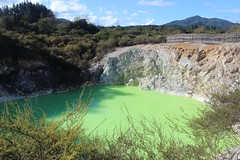 Thermal Wonderland / Rotorua