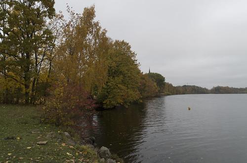 Pļaviņu HES ūdenskrātuves krasts, 17.10.2017.