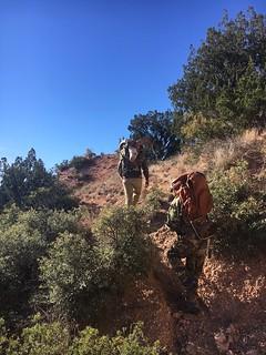 Texas Free Range Hunt – Palo Dura Canyon 9