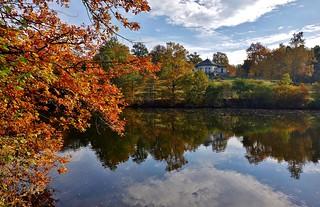 Germany, Herbst rund um den Bärensee bei Stuttgart, Bärenschlössle, 75620/9093