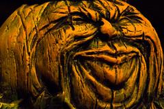Halloween Macro Mondays (Glotzsee) Tags: macromondays halloween