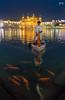 Golden Temple (Yogendra174) Tags: goldentemple amritsar gurudwara religion boat water fish golden incredableindia india punjab