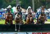 Aiken Fall Steeplechase 2017 (APGougePhotography) Tags: aiken horse horses jump steeplechase equestrian equine race southcarolina south carolina nikon nikond800 d800