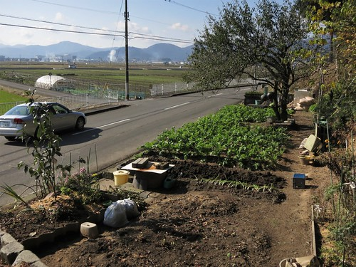 triangular strip of roadside land for vegetables and flowers